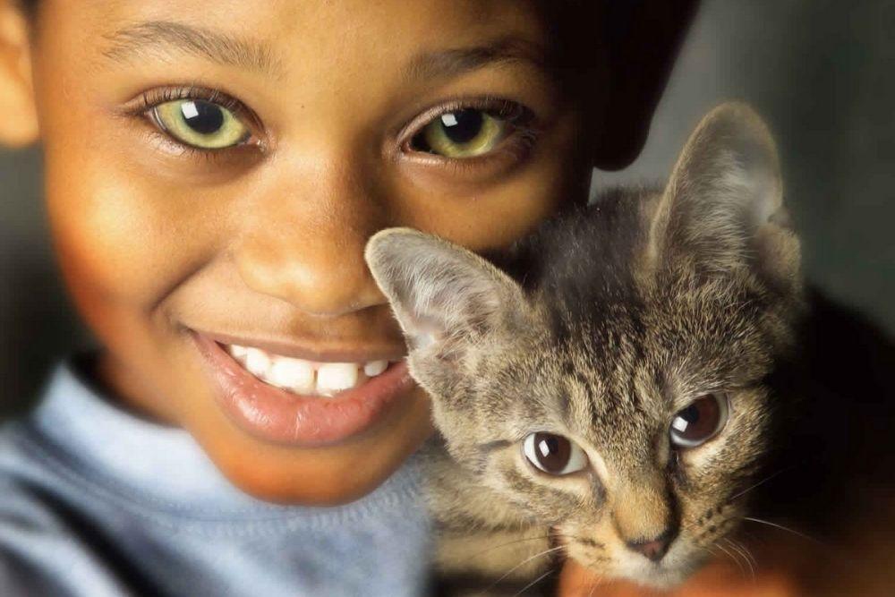 ano ang cat eye syndrome