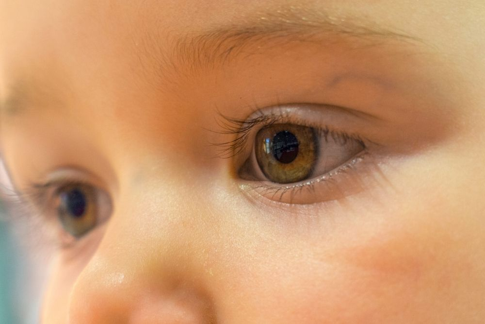 Vision Development of an Infant
