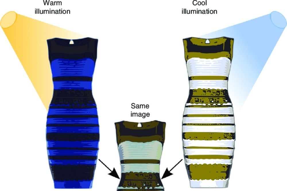 the truth behind the white and gold or blue and black dress