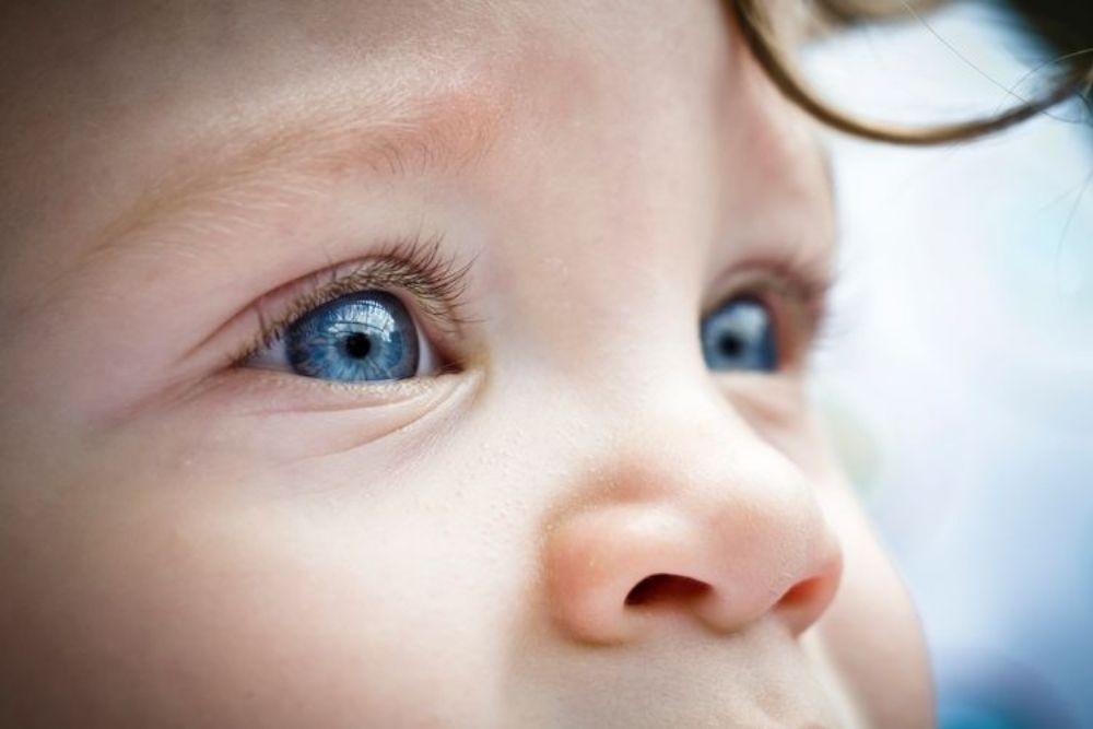 vision development in newborn to 12 months