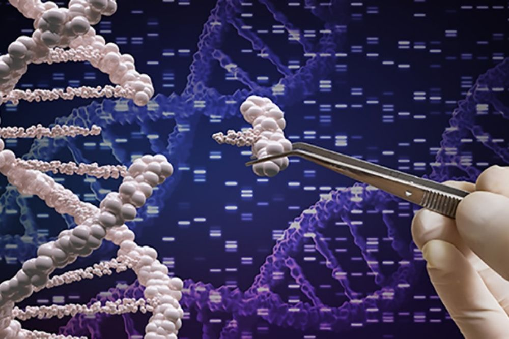 Role of Crispr in Eye Care DNA Editing 1