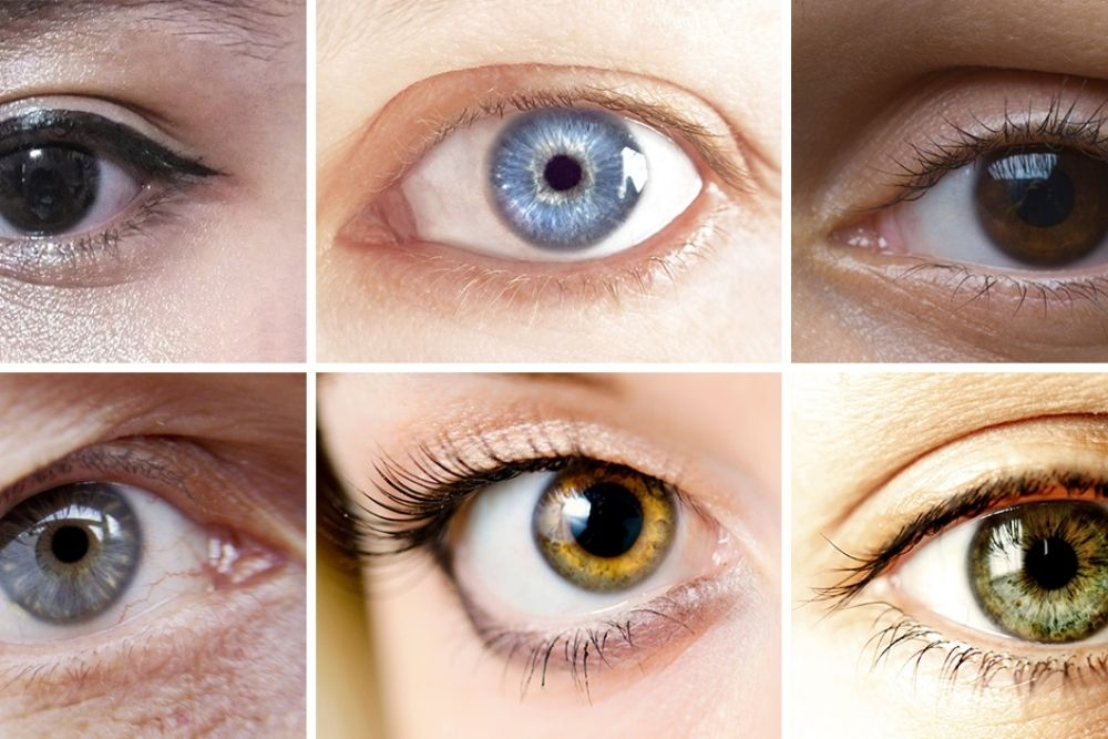 what causes the prevalence of brown eyes