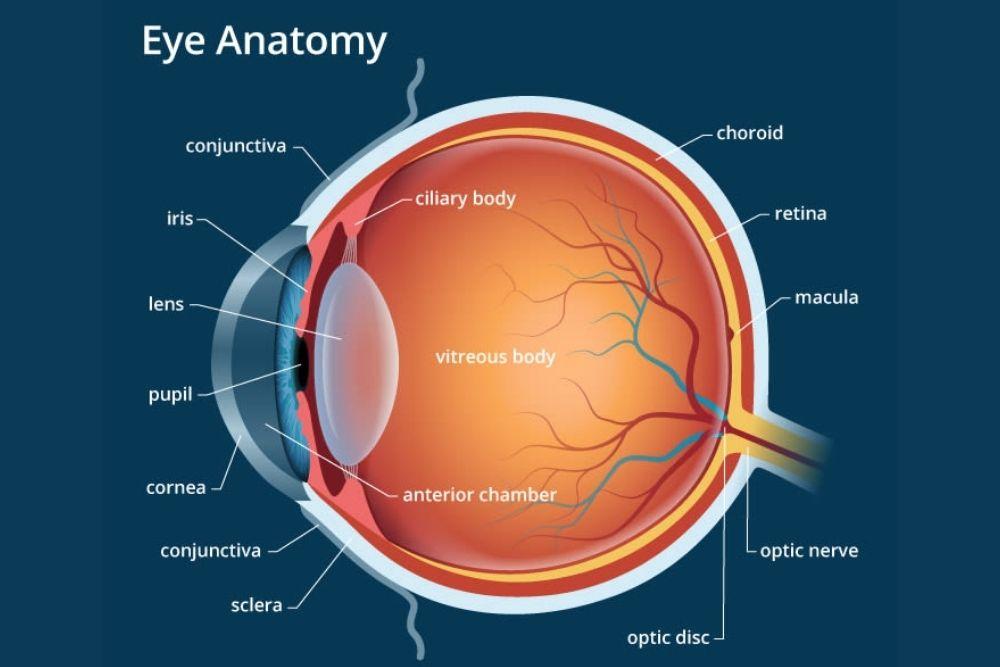 delayed-onset transient light sensitivity syndrome